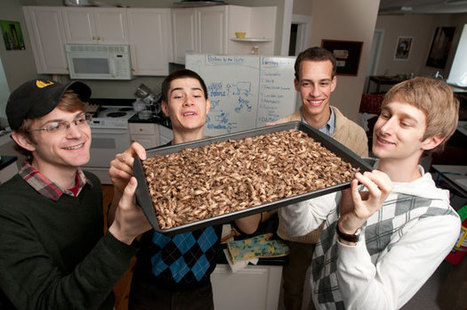 At Middlebury College, a Student Enterprise Fights Global Hunger — with Crickets   Seven Days   Entomophagy: Edible Insects and the Future of Food   Scoop.it