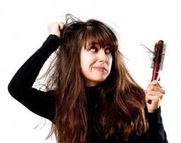 Saç Dökülmesini Engelleyen Bitkiler   Genel   Scoop.it