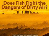 Does Fish Fight the Dangers of Dirty Air? | Longevity science | Scoop.it