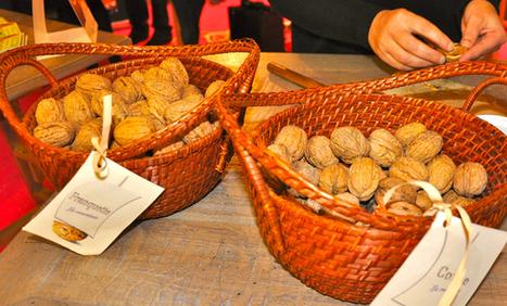 Les produits d'Aqui! La noix du Périgord, une richesse gastronomique | Agriculture en Dordogne | Scoop.it