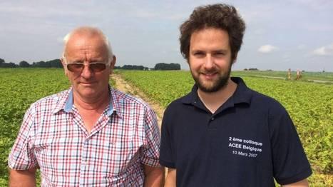 Geer: la récolte des pommes de terre se prépare | Revue de presse agricole de la FUGEA | Scoop.it