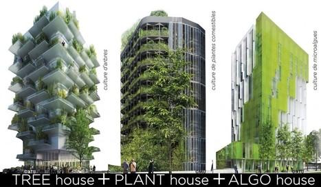 Toits Vivants, avec l'équipe In Vivo, lauréat de Réinventer Paris | ville et jardin | Scoop.it