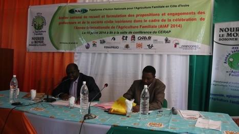 La Côte d'Ivoire ne consacre que 4 à 5% de son budget à l'agriculture   Questions de développement ...   Scoop.it
