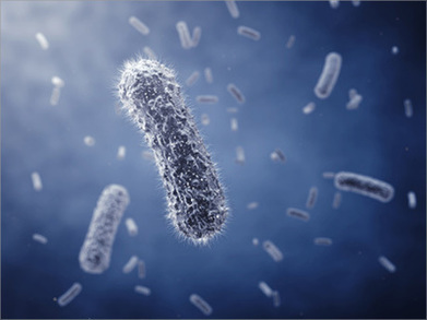 Les professionnels libéraux sous-estiment le risque infectieux, selon un rapport de la DGOS – La Stérilisation médicale | La Stérilisation Médicale | Scoop.it