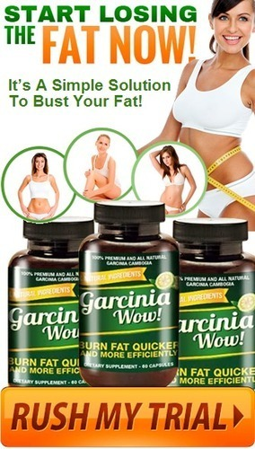 Garcinia WOW Review - RISK FREE TRIAL (LIMITED TIME) | 100% satisfaction guaranteed When To Expect Results? | Scoop.it