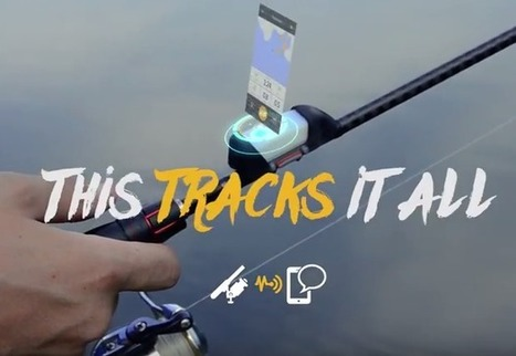 ANGLR Tracker Unveils First Rod-Mounted Fishing Technology | Développement économique local | Scoop.it