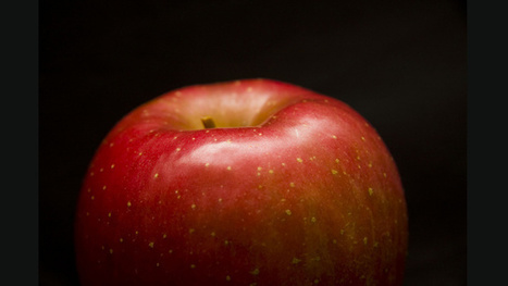 Did An Inspirational Apple Really Fall On Newton's Head? - Gizmodo Australia | 7th Grade History | Scoop.it