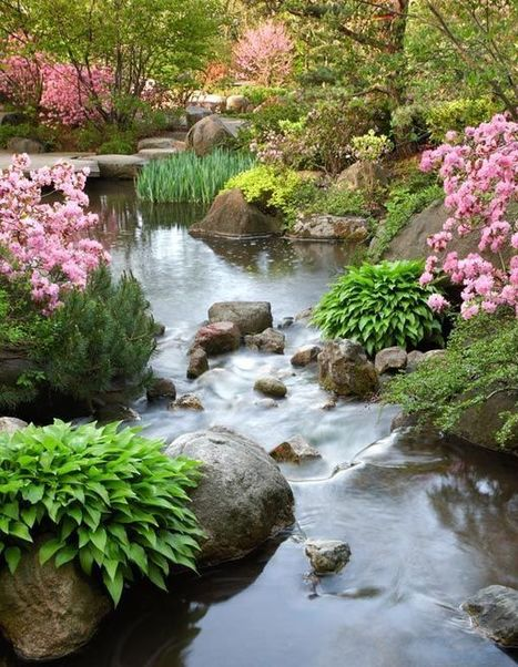 Anderson Japanese Gardens Ranked the top Japanese Garden in North America! - Garden Chic | Japanese Gardens | Scoop.it