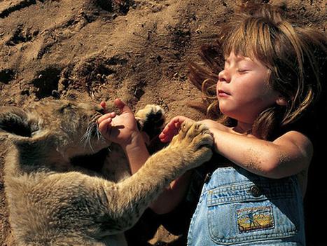 Partez à la rencontre de Tippi Degre, une enfant qui a grandi auprès des animaux | Histoire8 | Scoop.it
