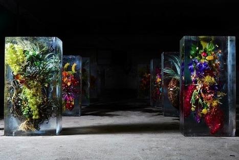 Azuma Makoto y Flores congeladas | artesaniaflorae | Scoop.it