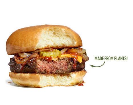 Google était prêt à dépenser des millions pour ce hamburger | Geeks | Scoop.it