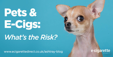 Pets and E-Cigs: What's the Risk? - Ashtray Blog | Electronic Cigarettes | Scoop.it