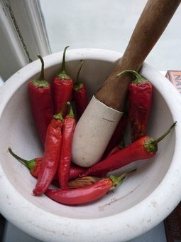 How Hot is That Pepper? Unpacking the Scoville Scale | Agricultural Biodiversity | Scoop.it
