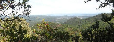 Randonnées en Cévennes - FIRA - AUTOUR DU GALEIZON, ENTRE DRAILLES ET VALATS | Cévennes Tourisme spécial FIRA 11 mai 2013 | Scoop.it
