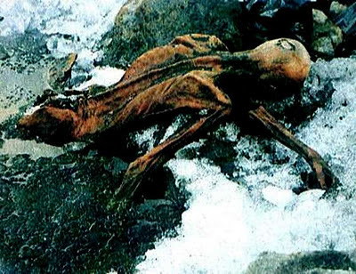 Otzi's final hours: A rest, a meal, then death | Otzi the Iceman | Scoop.it