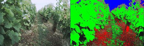 Un Robot enjambeur viticole en cours de développement par Naïo Technologie | Winemak-in | Scoop.it