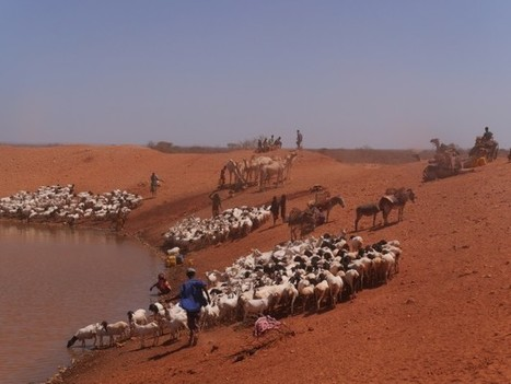 """UN Predicts 40 Percent Water Shortfall by 2030 