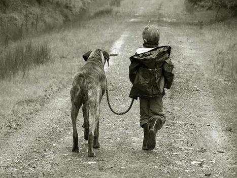 7 Children Who Were Raised By Animals - ODDEE | enjoy yourself | Scoop.it