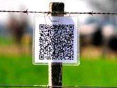 Una fórmula de éxito startuping agro-tecnológica   Mundo agropecuario   Scoop.it