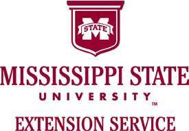 MSU to Begin Digital Literacy Initiative | Vicksburg Daily News | Working Differently in Extension | Scoop.it
