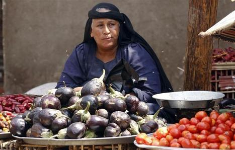 Food price inflation rises to 8.2 % in Egypt | Égypt-actus | Scoop.it
