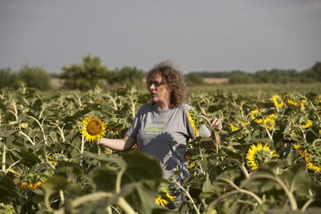 Farmers2Farmers : une plateforme pour cultiver l'agriculture écologique en Europe | Entrepreneuriat et économie sociale | Scoop.it