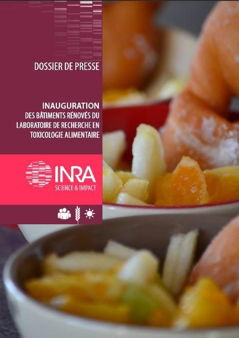 Des dispositifs rénovés pour la recherche en Toxicologie Alimentaire | EntomoNews | Scoop.it