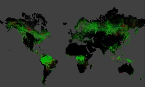 These maps show where the Earth's forests are vanishing | STEM Connections | Scoop.it