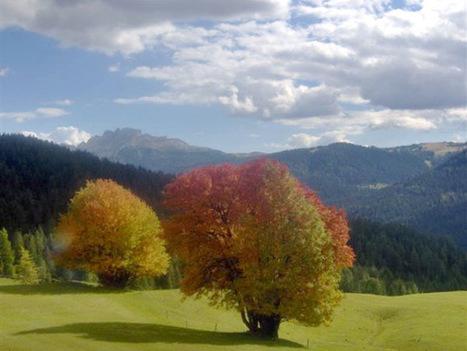 Turismo diffuso: borghi e territori europei poco conosciuti - Viniesapori.net | I Territori parlanti | Scoop.it