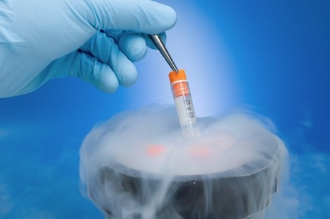 Embryo and Sperm shipping - Surrogacy in India - Kiranivfblog   Surrogacy   Scoop.it