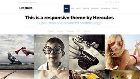 Hercules Portfolio WordPress Theme | Free & Premium WordPress Themes | Scoop.it