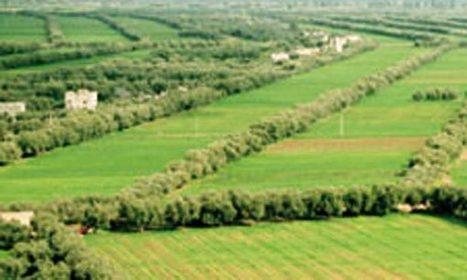 Foncier agricole - LE MATiN | Habitat, foncier et développement territorial | Scoop.it