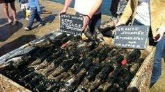 660 bouteilles du Champagne Drappier sortent de l'eau… de mer | Le Vin et + encore | Scoop.it
