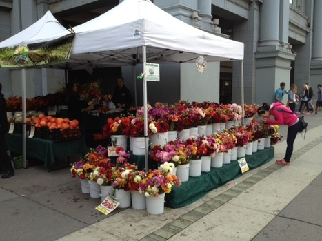 Farmer's Market at the Ferry Building | Food | Scoop.it
