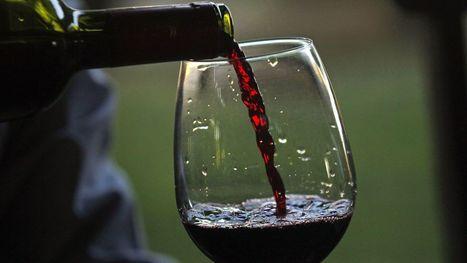 How to taste fancy #wine like a boss | Vitabella Wine Daily Gossip | Scoop.it