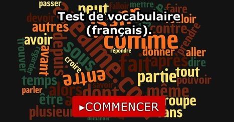 Test de vocabulaire (français). | Remue-méninges FLE | Scoop.it