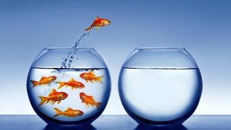 Sai come chiedere scusa? 6 step per farlo in modo efficace | Blog – Psicologo Milano | Psicologia e... | Scoop.it