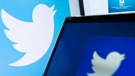 Wikileaks dreigt Twitter-concurrent op te zetten na verwijderde accounts   Anders en beter   Scoop.it