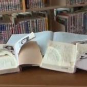 Anne Frank Literature: 265 Books Destroyed in Tokyo | Censorship | Scoop.it