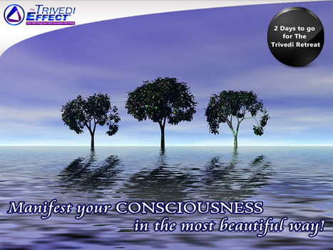 Discover the purpose of your existence! | Wellness | Scoop.it