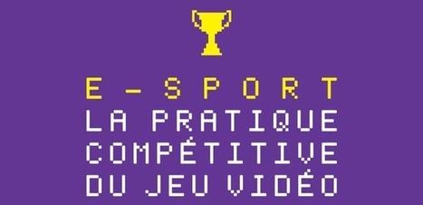 e-Sport et loi numérique - Que cherche le gouvernement ? | Gaming Business | Scoop.it