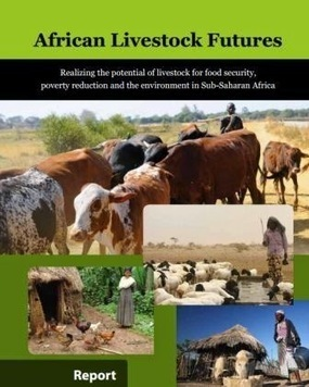 PAEPARD: African Livestock Futures: Realizing the potential of livestock for food security, poverty reduction and the environment in Sub-Saharan Africa | Agriculture, Climate & Food security | Scoop.it