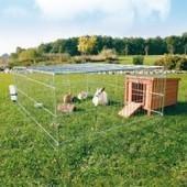 Comment installer un enclos ou un clapier pour lapin ? - Blog de l'animalerie zoomalia | PETS & ANIMAUX | Scoop.it