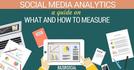 Social Media Analytics:  A Guide on What and How to Measure | Google Plus and Social SEO | Scoop.it