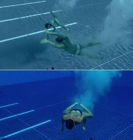 Championnats du monde de plongeon 2013, Barcelone   1   16s3d: Bestioles, opinions & pétitions   Scoop.it