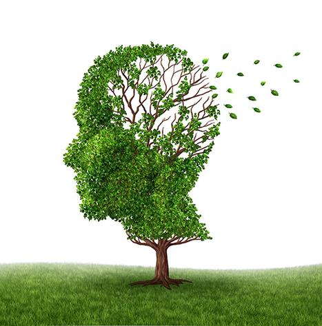Muistisairaudet lisääntyneet hälyttävästi – voiko itse vaikuttaa aivojen hyvinvointiin? | Psykologia, sen tutkimus ja soveltaminen | Scoop.it