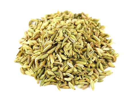 Fennel Seed Exporters from India, Indian Fennel Seed Supplier | Agrocrops | Scoop.it