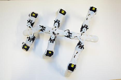 Norwegian Robotics Team Designs 3D Printed, Self-Learning Robots | [In] Morph - Logic | Scoop.it