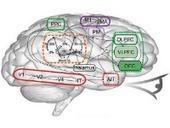 Què és el pensament computacional?   Robòtica educativa   Scoop.it