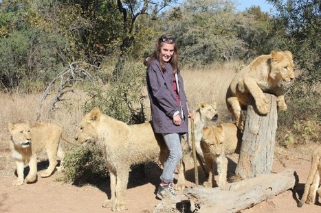 The truth about volunteering with lions - Africa Geographic | Our Evolving Earth | Scoop.it